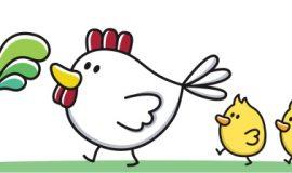 الدجاجة وفراخها